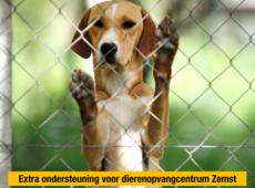 zemst ben weyts steunt dierenasiel